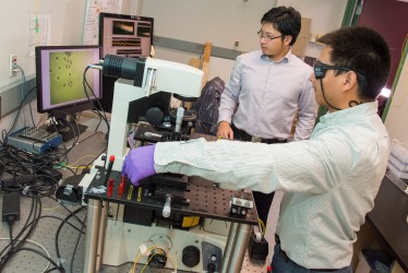 Graduate students Yao Shen, left, and Chaoyang Ti use the fiber optical tweezers to trap one of the cells seen on the computer screen to the left.