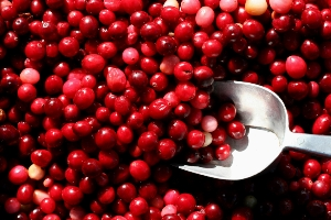 Cranberries may prevent urinary tract infections.