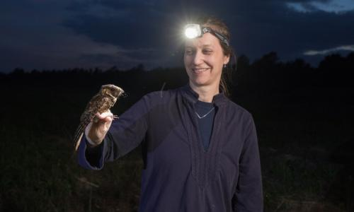 Marja Bakermans with the subject of her current research: the whip-poor-will. This is one of several specimens she and her team captured and tagged during a recent evening in the field. alt