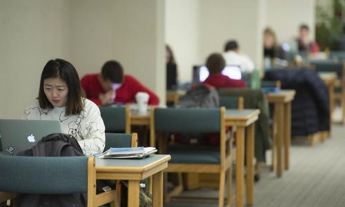 A student sits in one of the study spaces at the library.