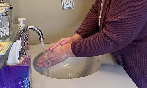 WPI's Sue Roberts says washing with simple soap and water is one of our best weapons against the coronavirus. alt