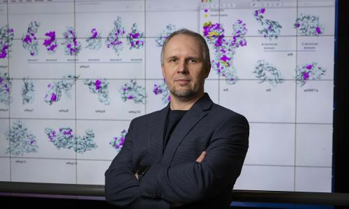 WPI bioinformatics researcher Dmitry Korkin with 3D models of the novel coronavirus. alt