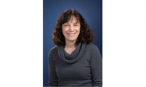 Suzanne Scarlata, Richard Whitcomb Professor of Biochemistry. alt