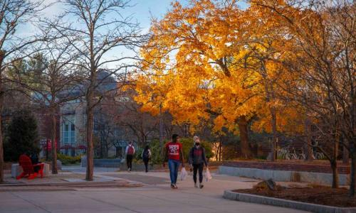 Students walk across the center of campus with a tree full of fall foliage in the background.