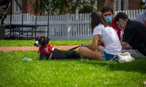 A couple of WPI students sit on the Quad with a dog wearing a WPI bandana.