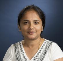 Bheemaiah Veena Shankara Narayana Rao